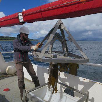 day grab on vessel deck