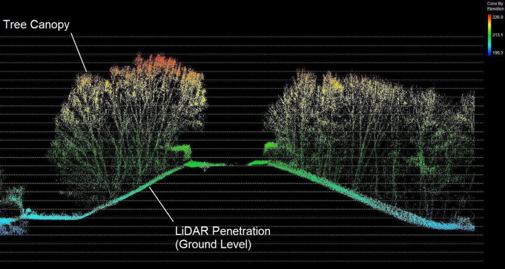 LiDAR Mapping - LiDAR coverage of tree canopy