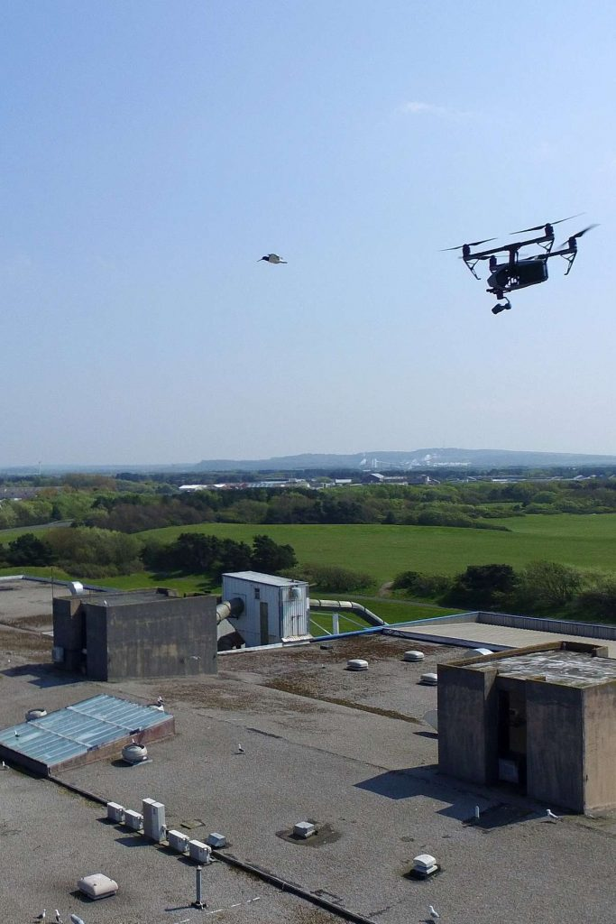 UAV Surveys